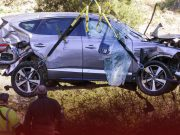 Tiger Woods found alive with serious leg injuries in a wreck