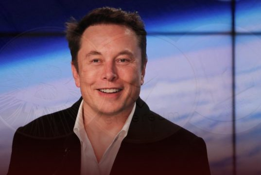 """Cryptocurrency Investors to Elon Musk, """"Stop Tweeting"""" about Crypto"""