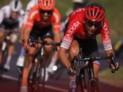 French officials launched probe after Tour de France spectator causes crash
