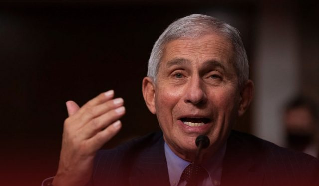 Fauci Forecasts Worsening Coronavirus Conditions in the United States
