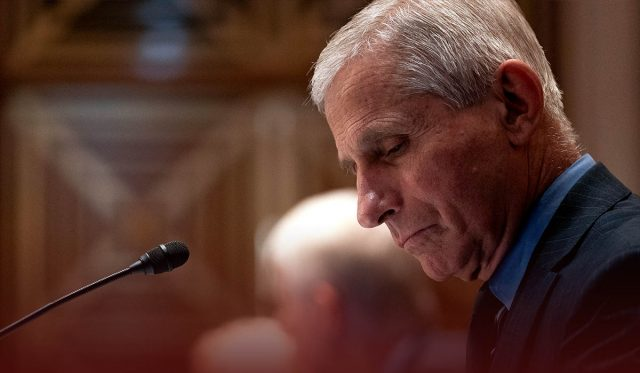 Dr. Fauci Dismissed Research on Efficacy between Pfizer and Moderna