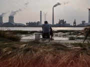 China Coal Prices Soared to Record Highs