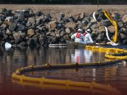 Oil Spill Reached Beaches, Wildlife along Southern California